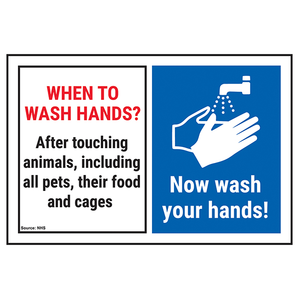 When To Wash Hands? After Touching...Now Wash Hands!